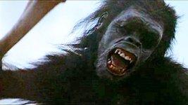 2001-ape-killer.jpg